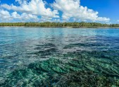 Les eaux claires de l'île Maurice