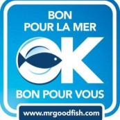 logo-mr-goodfish