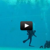 Plongeurs sous acide ? Non, un simple entraînement… filmé en accéléré