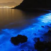 La mer devient bleu fluo à Hong Kong