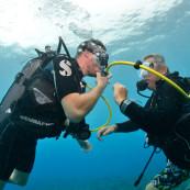plongeurs-exercice