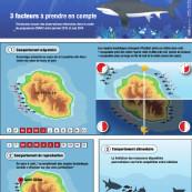 Les résultats du programme CHARC, à La Réunion