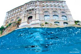 Plongée à Monaco