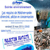 conference-requin-cdmm
