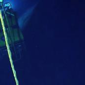Vidéo d'un cachalot filmé par un ROV