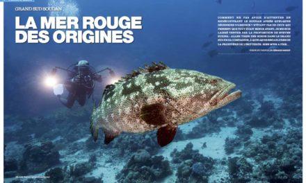 Soudan, la mer rouge des origines…dans notre numéro 141