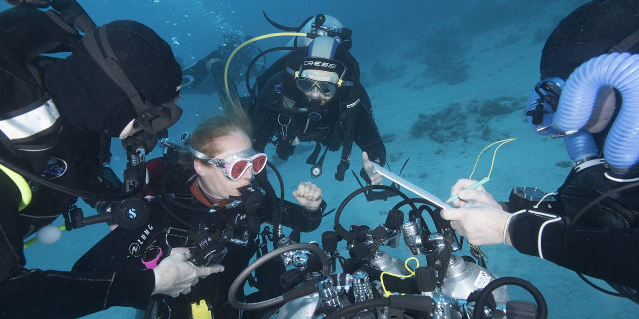 Dans Plongeurs International 147. Détendeurs.
