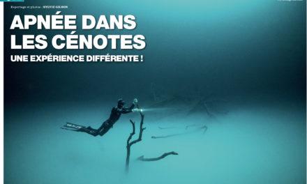Apnée dans les Cénotes. Dans le numéro 149 de Plongeurs International