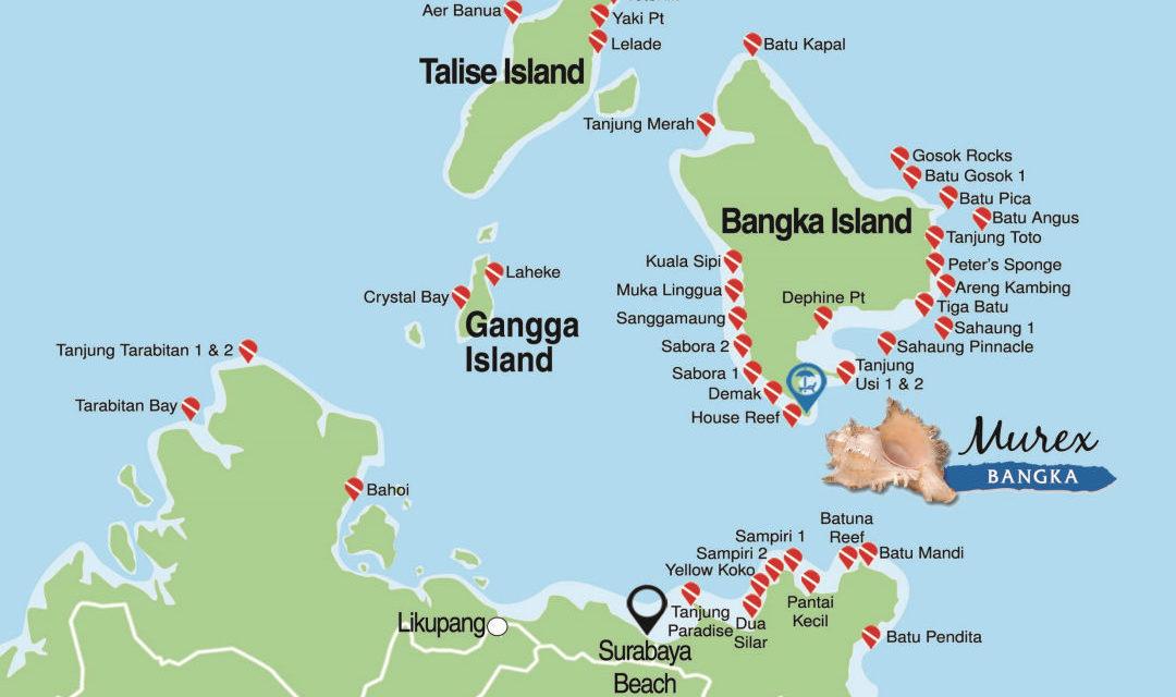 Dossier spécial Murex Dive Bangka (2)