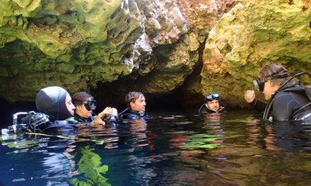 Majorque… y avez-vous pensé pour plonger ?